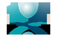 Logo vom Deutschen Beckenbodenzentrum